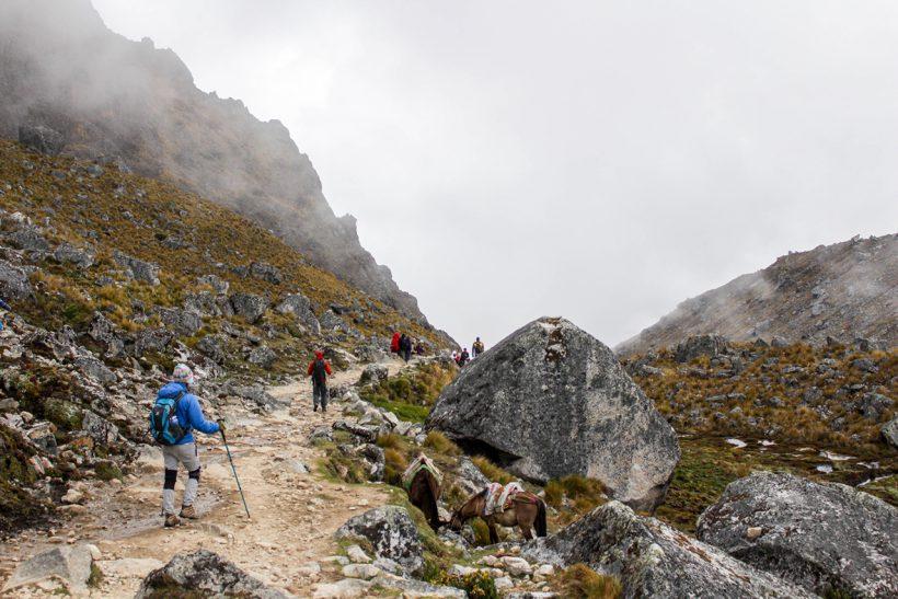 peru-expedicion-salkantay-04
